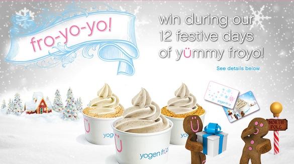 12 Festive Days of Festive Froyo!